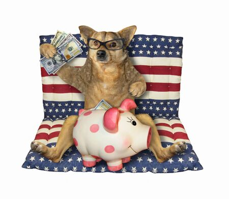 The beige dog patriot in glasses is sitting with a piggy bank of usa dollars on an american air bed. White background. Isolated. Archivio Fotografico
