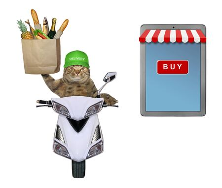 The beige cat courier in a green cap is delivering a paper bag with groceries on a moped. He is near a big tablet pc computer. White background. Isolated.