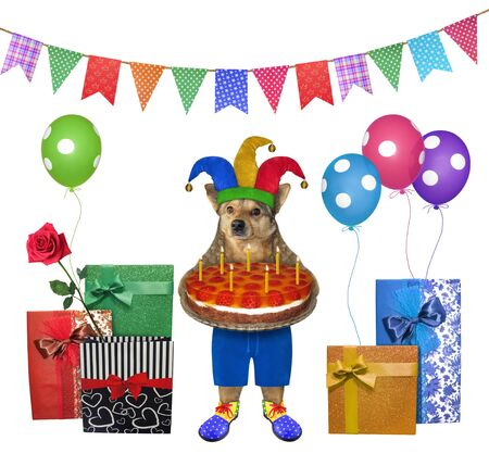 The beige dog in a jester hat is holding a birthday cake with candles near gift boxes and multi-colored balloons. There are colorful party flags above him. White background. Isolated.