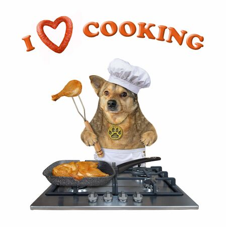 The beige dog in a chef hat is standing near a gas stove on which there is a frying pan with fried chicken legs. I love cooking.White background. Isolated.