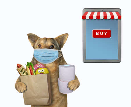 The beige dog  in a surgical protection face mask is holding a paper bag of groceries and toilet paper rolls. . He is near a big tablet pc computer. White background. Isolated.
