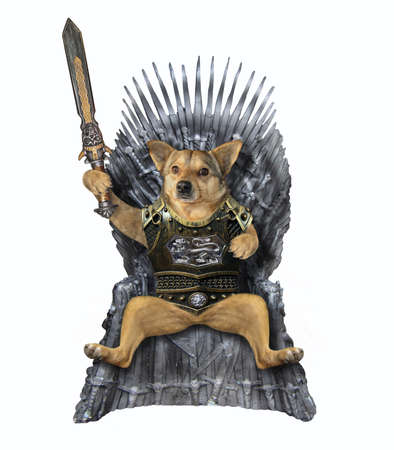 The beige dog king in a cuirass with an inlaid sword is sitting on an iron throne. White background. Isolated.