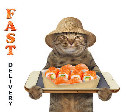 The beige cat in a straw hat takes a paper box of sushi from a smartphone screen. Fast delivery. White background. Isolated.
