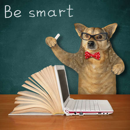 The beige dog in a red bow tie and glasses is standing near the wooden table on which there is an open book and a laptop. Be smart.