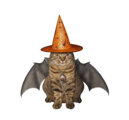 The beige cat with bat wings is wearing a witch hat and a skull shaped pendant with ruby eyes for Halloween. White background. Isolated. Reklamní fotografie