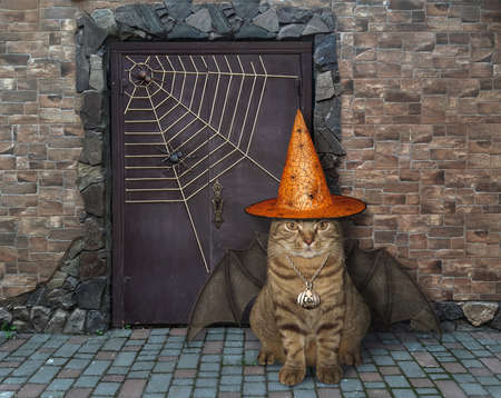 The beige cat in a witch hat with bat wings is guarding the door of an old castle for Halloween.