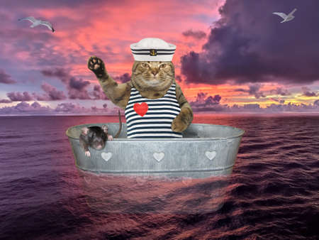 The beige cat in a seaman clothing with a his black rat is drifting in a metal oval washtub on the open sea against the background of a red sunset.