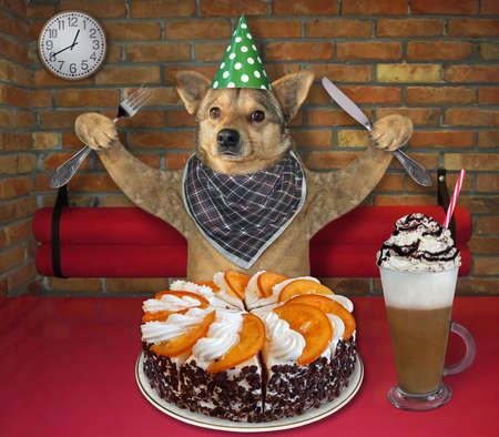 The beige dog in a party hat with a fknife and a fork in his paws is eating a holiday orange cake and drinking coffee with whipped cream at a table in a restaurant.