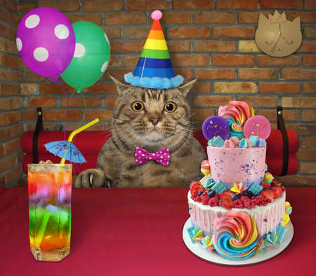 The beige big eyed cat in a party hat with balloons is eating a holiday two tiered cake and drinking juice with ice at a table in a restaurant.