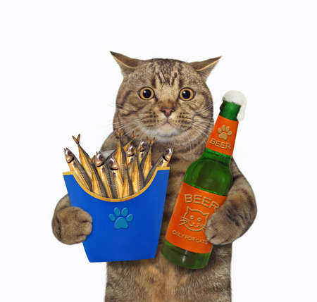 The beige big eyed cat is holding a blue paper box of smoked fish and a bottle of beer. White background. Isolated.