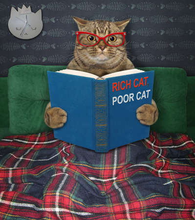 A beige big eyed cat in glasses is reading a book called rich cat, poor cat. He is in bed at home.