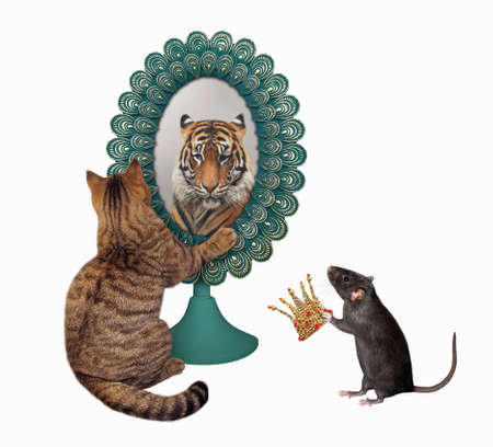A cat stares his reflection in a mirror. He sees a tiger there. A rat gives a gold crown to him. White background. Isolated.