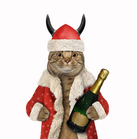 A beige big eyed cat Santa Claus in a viking helmet with horns holds a bottle of champagne. White background. Isolated.
