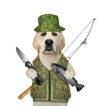 A dog fisher in an uniform with a fishing rod holds a penknife and the caught fish. White background. Isolated.