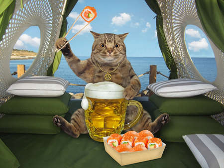 A beige big eyed cat drinks beer from a big mug and eats sushi using chopsticks in a restaurant by the sea.
