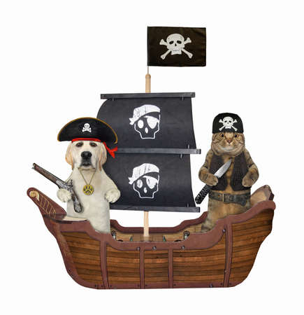 A beige cat with a dog are floating on a pirate sailing ship. White background. Isolated.