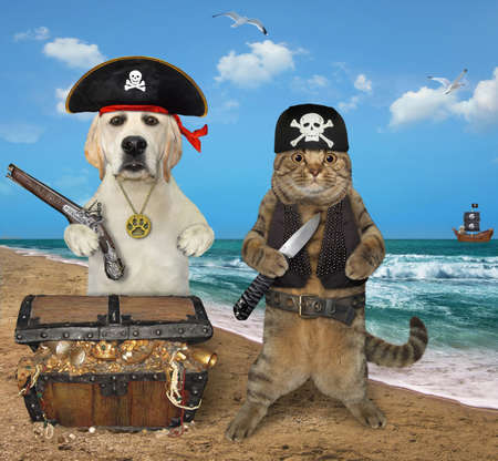 A beige cat with a dog are next to a pirate chest full of treasures on the seashore.