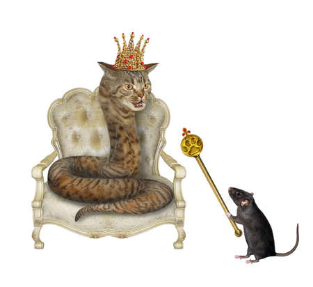 A beige cat snake in a gold crown is in a throne. A black rat is holding a royal scepter. White background. Isolated.