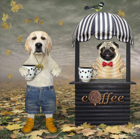 A dog in a small wooden shop booth sells coffee in the autumn park.