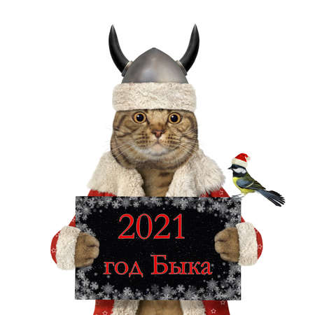 A cat in a viking Santa helmet holds a sign that says 2021 - Year of the Ox. White background. Isolated. Inscription in Russian language.