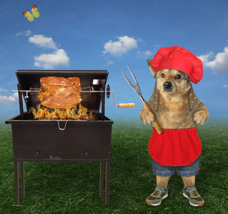 A beige dog in a red chef hat with a barbecue fork is grilling a slice of meat on skewer in the meadow.