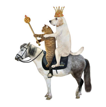 A dog labrador king in a gold crown with a royal scepter and a beige cat ride a gray horse. White background. Isolated.