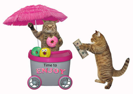 The funny cat buys donuts at the mini movable pink cart. Time to enjoy. Isolated.