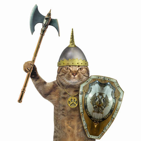 A beige cat armed with a battle ax, a helmet and a shield. White background. Isolated.