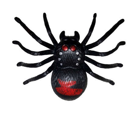There is a black toy spider. White background. Isolated. Stock Photo