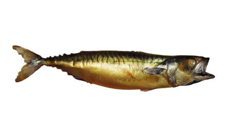 There is a whole smoked mackerel. White background. Isolated. Stock Photo
