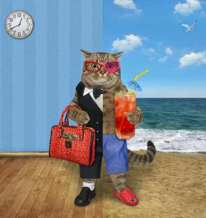One half of a beige cat dressed in a suit holds a briefcase and the other half dressed in shorts holds juice.