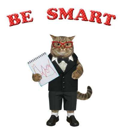 A beige cat businessman dressed in a suit holds a notepad with a chart. Be smart. White background. Isolated. Stock Photo