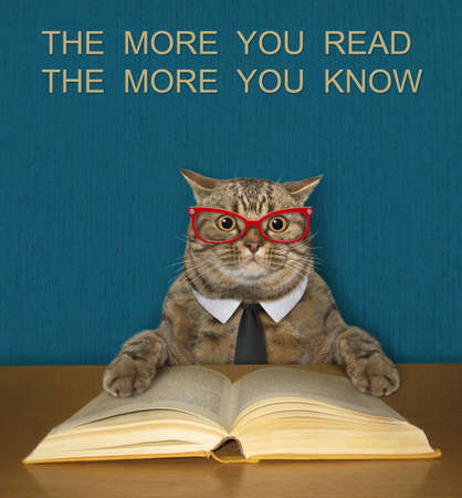A beige intelligent cat in a black tie and glasses reads an open book at the desk.