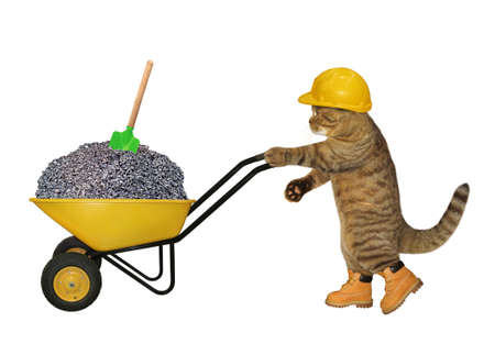 A beige cat builder in a construction helmet pushes a wheel barrow full of crushed stone. White background. Isolated.