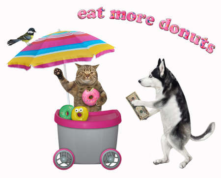 A dog husky buys a donut in a gray movable kiosk. White background. Isolated.