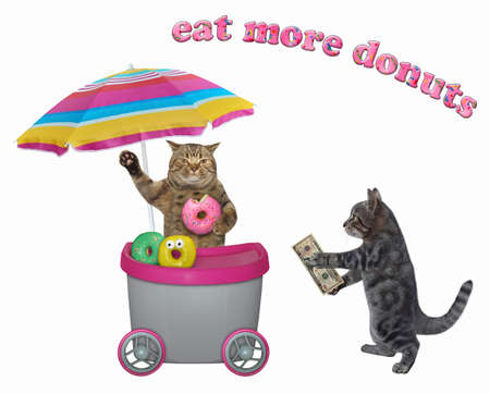 A gray cat buys a donut in a gray movable kiosk. White background. Isolated.