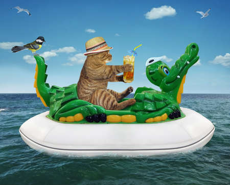 A beige cat in a straw hat with a glass of juice is floating on an inflatable crocodile in the sea at a resort.