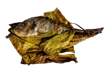 Grill fish gilt-head bream wrapped in banana leaf isolated on white background. Sparus aurata. Standard-Bild