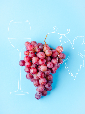 a grape of pink grapes isolated on a blue background and a drawn image of a glass for wine and vines with leaves. concept of winemaking and wine industry Stock Photo