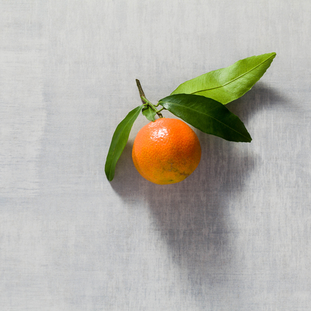 one tangerine on the table. copy space. Stock Photo
