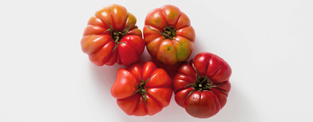 banner of brandywine tomato on a white background