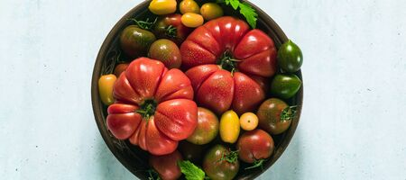 banner of multicolored tomatoes of different colors, shapes and sizes in a clay plate on the table. Summer background