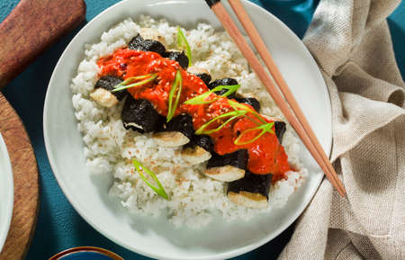 fried tofu wrapped in nori with tomato-coconut sauce and rice for sushi. vegan modern cuisine 版權商用圖片 - 154098666