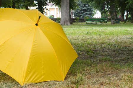 yellow umbrella in the park on the grass Zdjęcie Seryjne