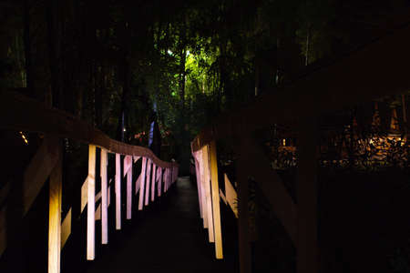 wooden bridge in searchlight leads to green trees in light of lanterns on background of night darkness