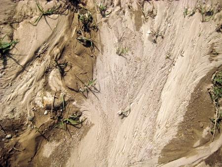 suelo arenoso: Figura arena seca después de que el agua se ha ido Foto de archivo