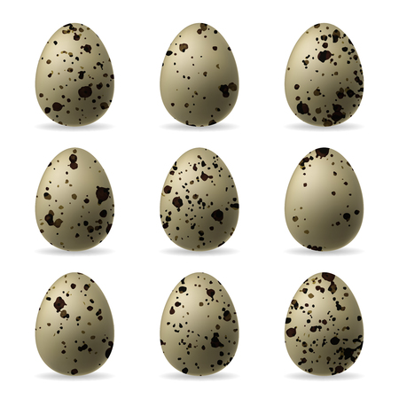 Realistic isolated quail eggs on white background.