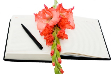 A daily diary lays open with a single flower on the side. Ready for today's entry photo