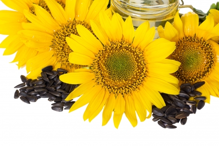 Yellow sunflowers and a handful of sunflower seeds isolated