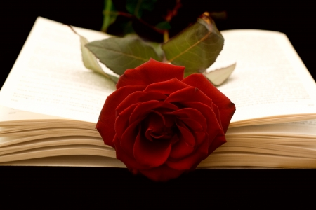 The open book and a red rose on a black background